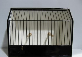 New Lovebird Show Cage